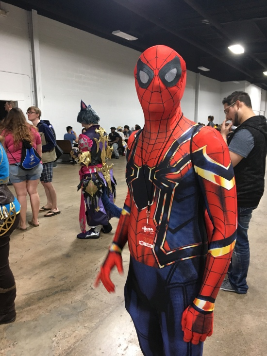 Spiderman__cosplay_the Splintering_too many games